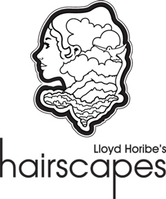 Hairscapes2
